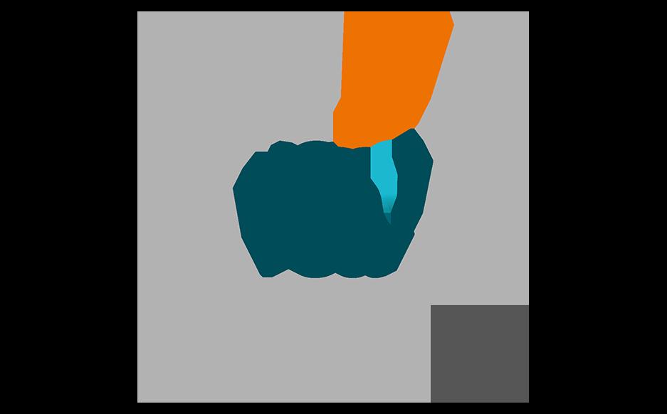 vca-2-ster